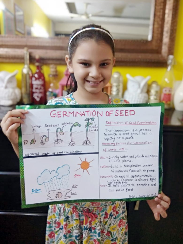 STUDENTS FOSTER ANALYTICAL SKILLS WITH SEED GERMINATION ACTIVITY