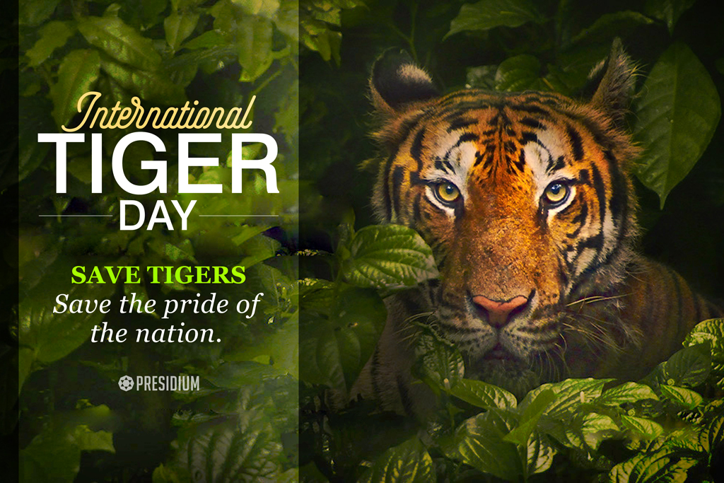 INTERNATIONAL TIGER DAY: SAVE THE STRIPES FROM BEING STRIPED!