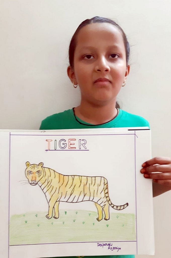 TIGER CONSERVATION 2020