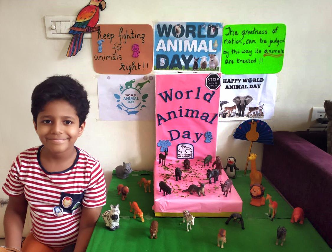 ANIMALS day 2020
