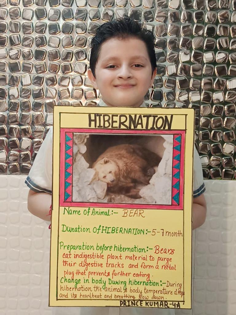 Science: Hibernation G4