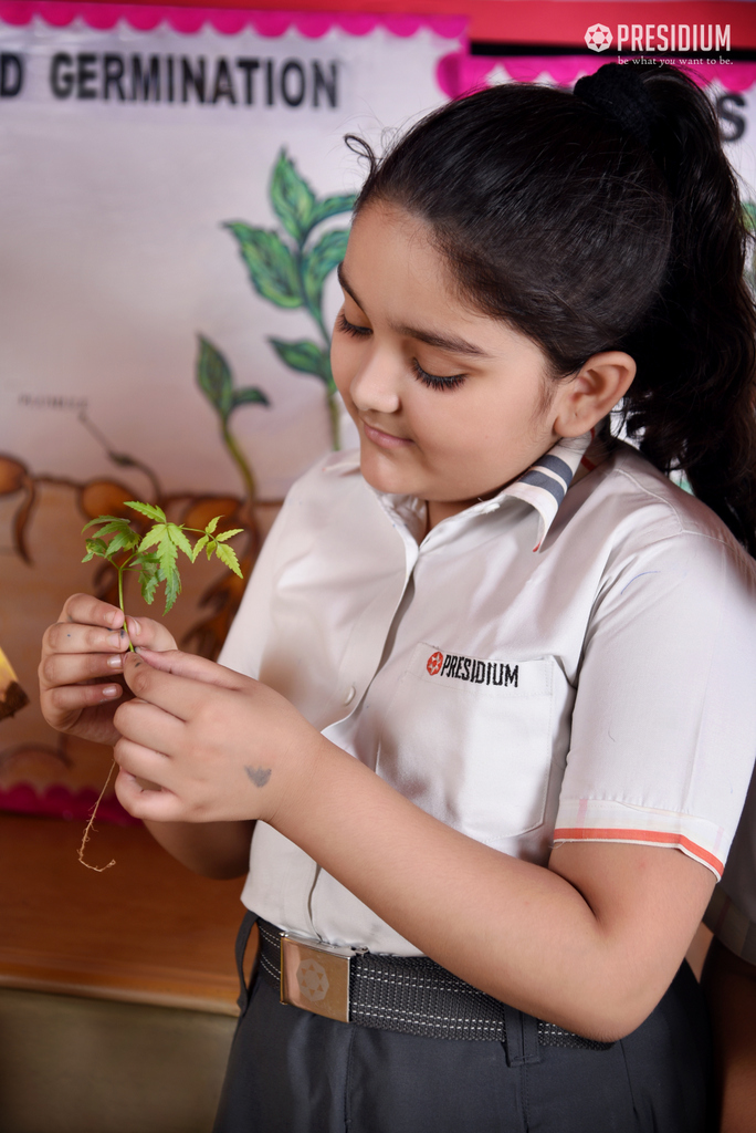STUDENTS LEARN ABOUT GERMINATION 2019