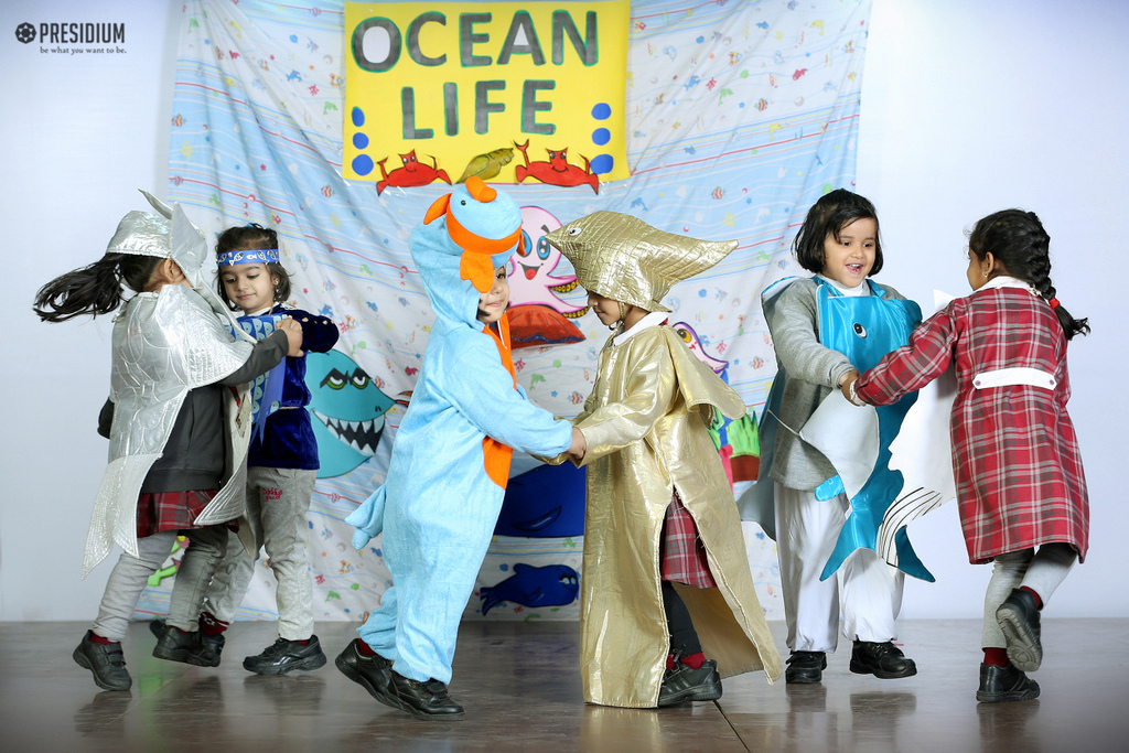 Special Assembly on Ocean Life